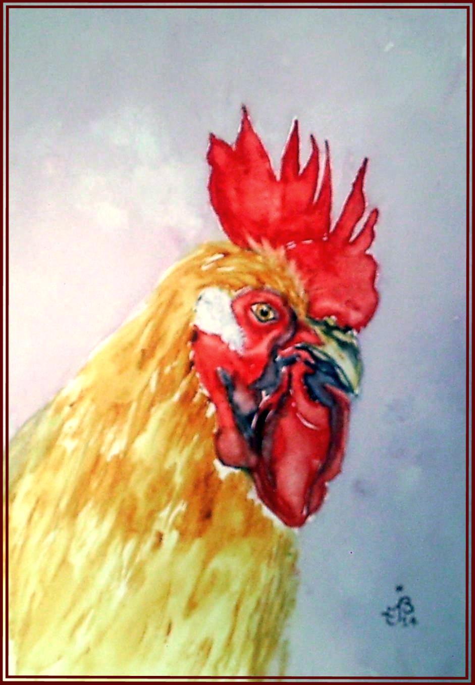 Coq portrait