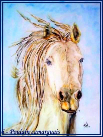 Tete cheval