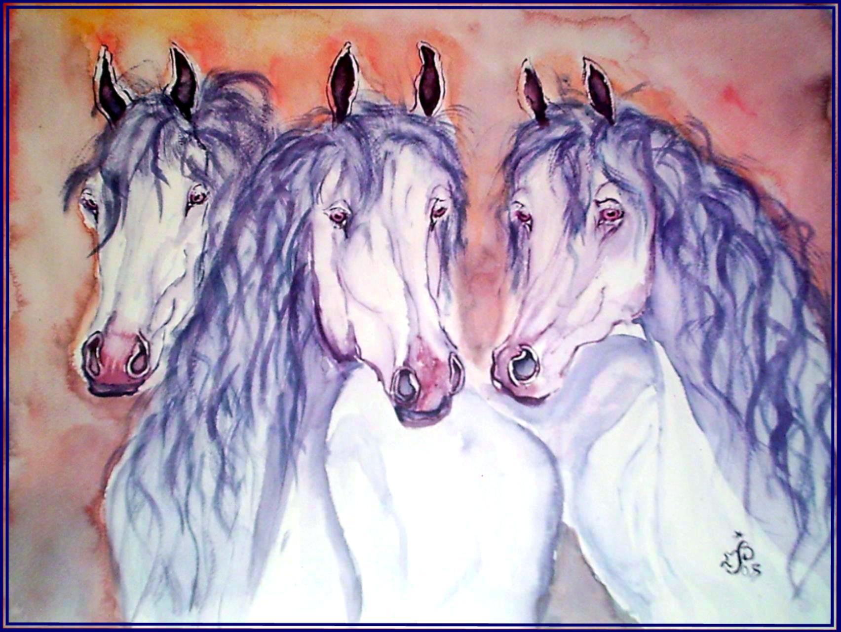 Trois chevaux camarguais 1
